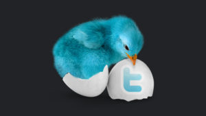 blue bird hatching from egg with twitter logo