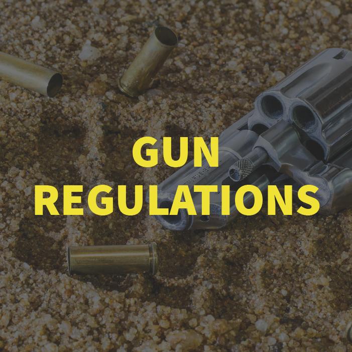 gun regulations